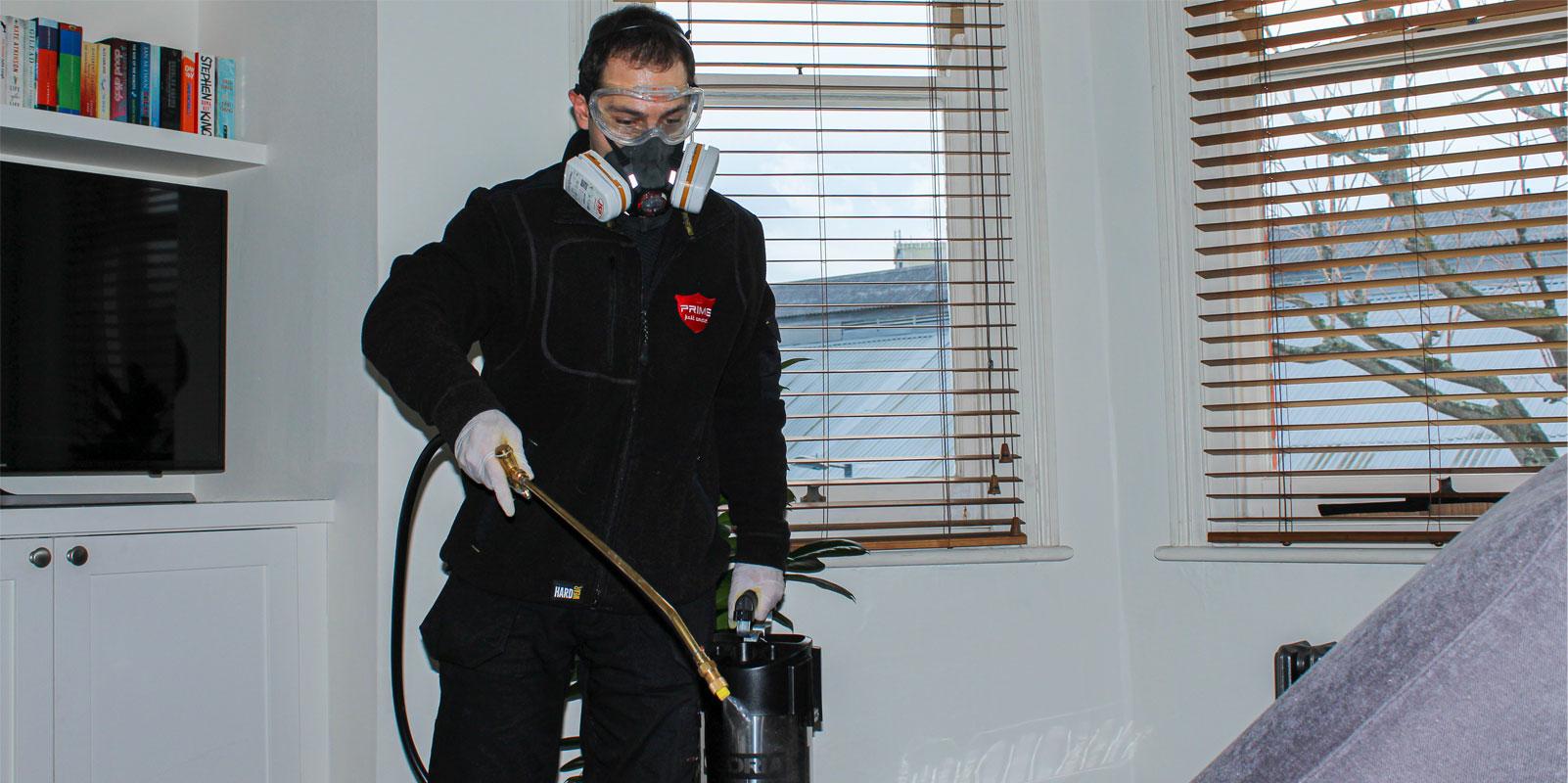 moth-spray-treatment