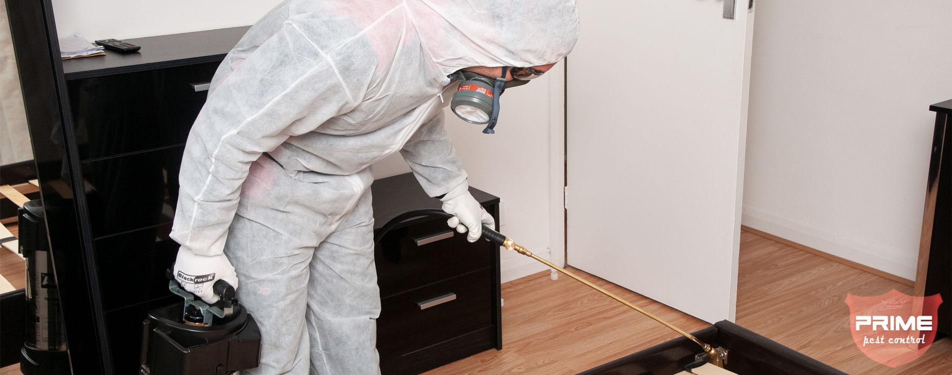 residential-pest-control-treatment-London