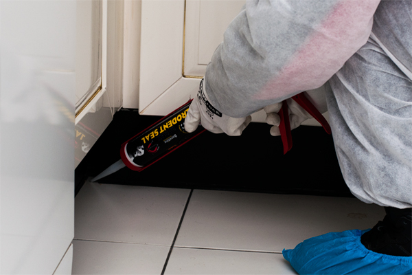 rodent-proofing-prime-pest-control